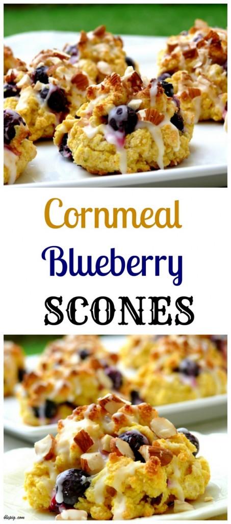 Cornmeal-Blueberry Scones + VIDEO   Noble Pig