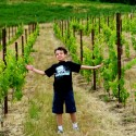 Jon-Noble-Pig-Vineyard1