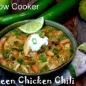 Slow-Cooker-Green-Chicken-Chile-11