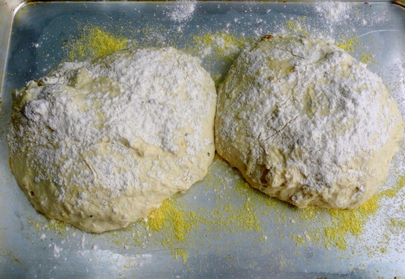 Easy Artisan Roasted Garlic Rosemary Bread dough 2