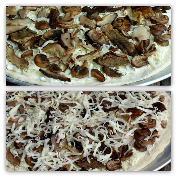 Cheesy Four Mushroom White Pizza topping the pizza