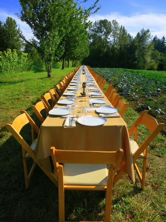 Farm to Fork Dinner table view