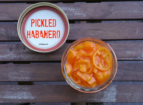 Pickled Habanero Deviled Egg Spread on Cheesy Toast jar