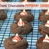 Dark Chocolate Peppermint Crackles