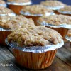 Streuseled Apple Oatmeal Cinnamon Chip Muffins