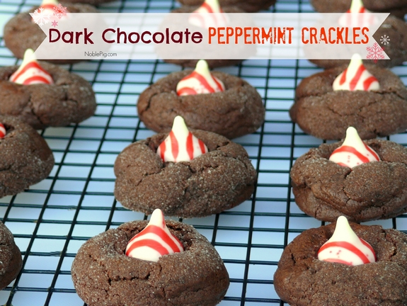 Dark Chocolate Peppermint Crackles | Noble Pig