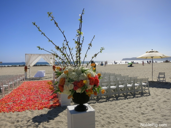Noble Pig Coronado Hotel Beach Wedding