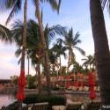 Noble-Pig-Hacienda-Hotel-Cabo-San-Lucas1