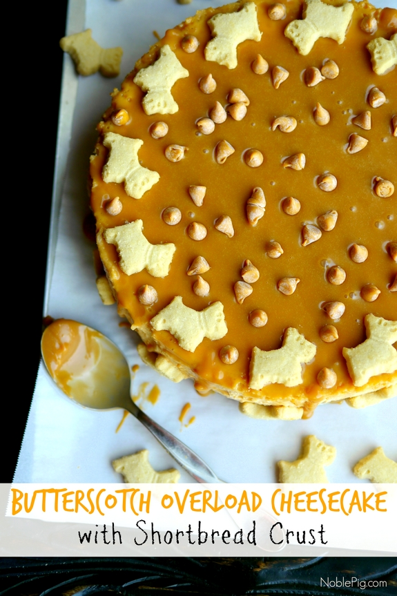 Butterscotch Overload Cheesecake with Shortbread Crust Noble Pig 2