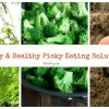 6 Happy and Helpful Picky Eating Solutions