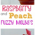 Raspberry-and-Peach-Fuzzy-Melbas
