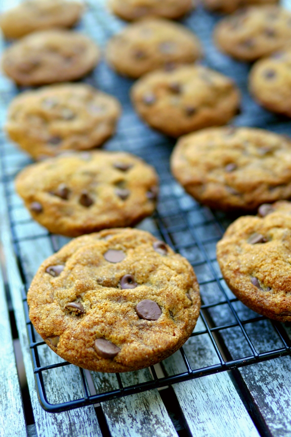 Soft Baked Pumpkin Molasses Chocolate Chip Cookies that have also been rolled in Cinnamon Sugar