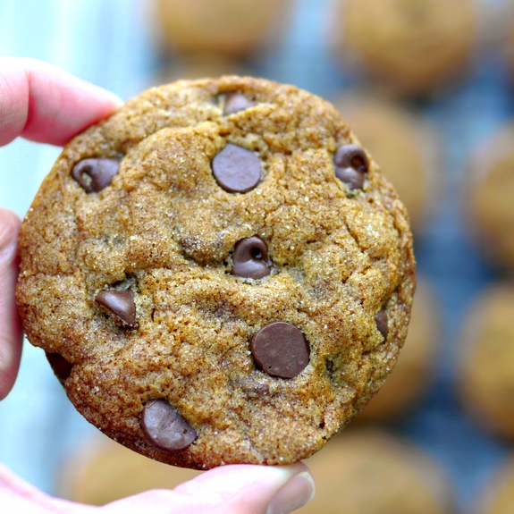 Soft Baked Pumpkin Molasses Chocolate Chip Cookies are delicious