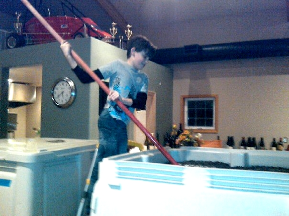 Benjamin Pollak doing his evening punch downs 11 years old Noble Pig Winery