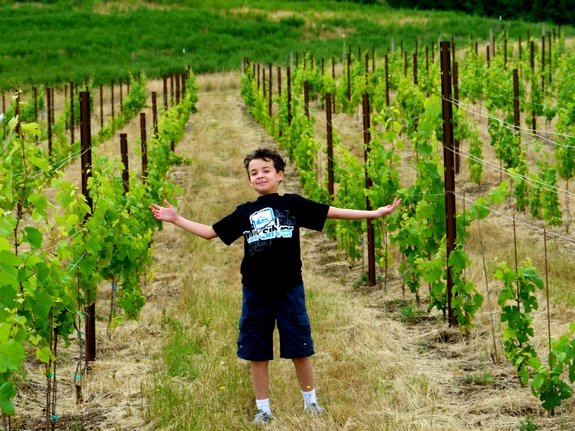 Jon Pollak Noble Pig Vineyard and Winery