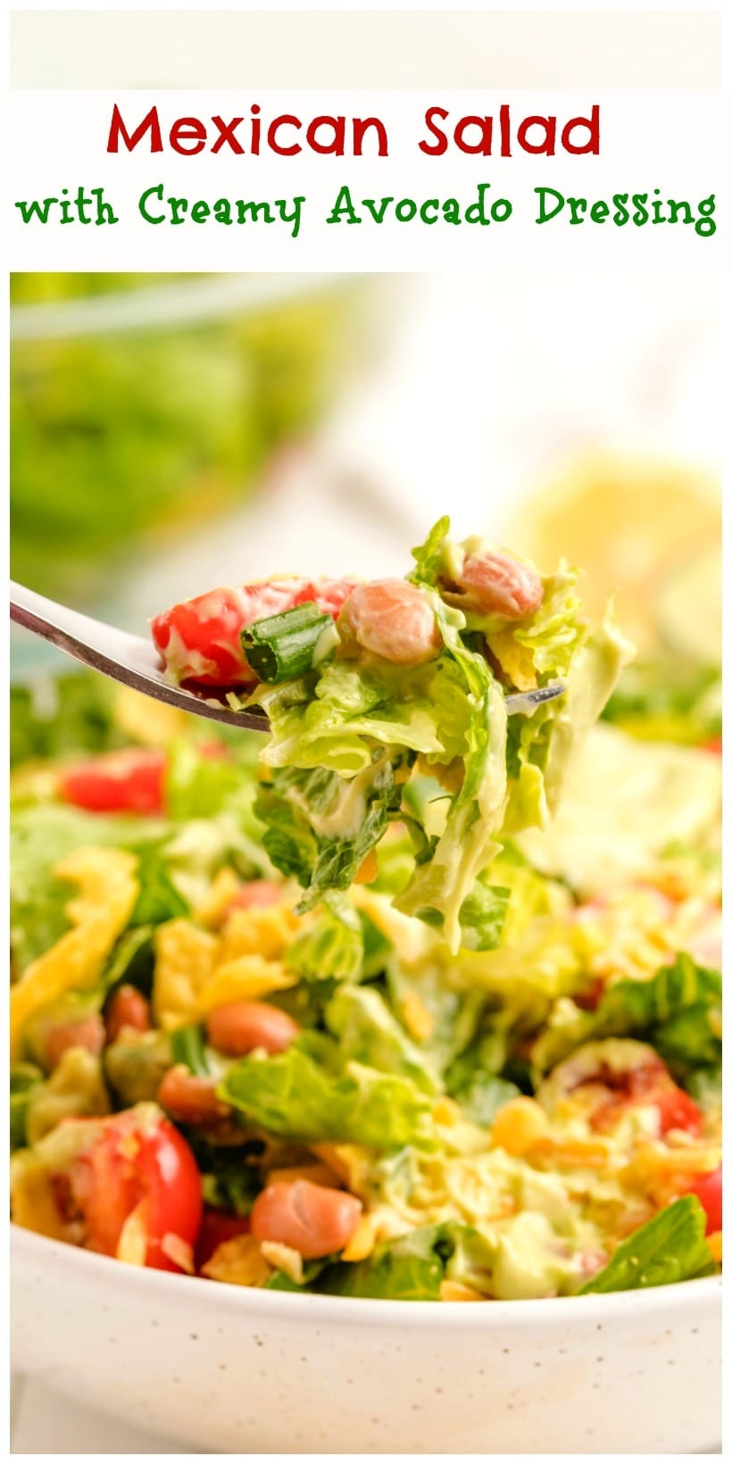 Mexican Salad with a Creamy Avocado Dressing is the perfect accompaniment to a heavy Mexican style meal. You can't beat the fresh flavors and colorful ingredients of this popular Mexican side dish.  via @cmpollak1