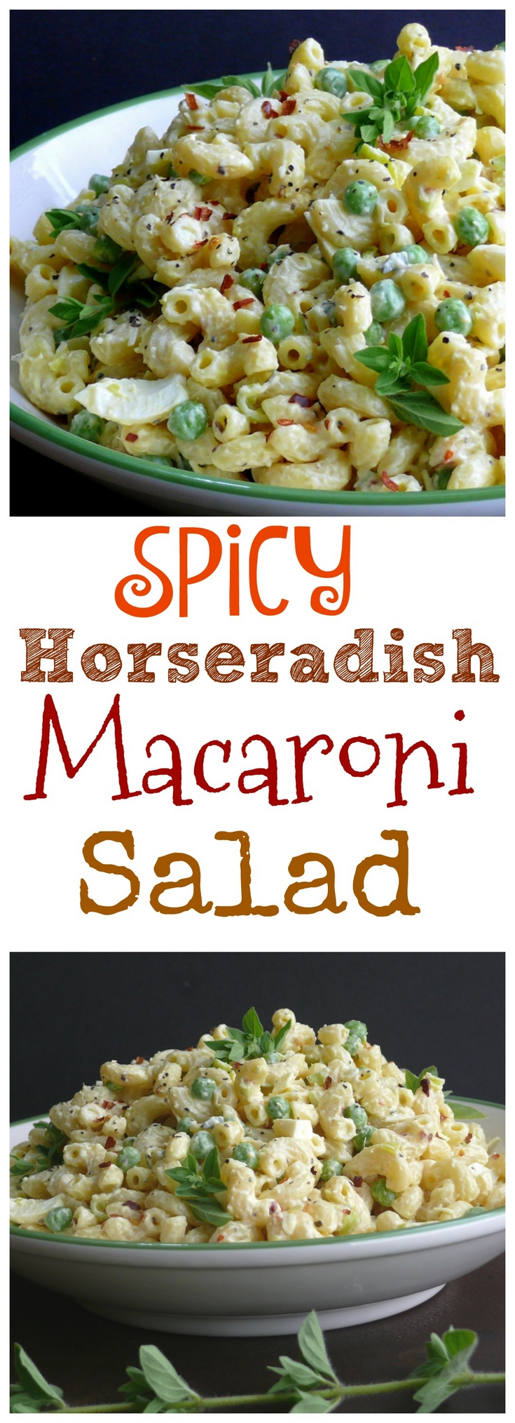 VIDEO + Recipe for this Spicy Horseradish Macaroni Salad. It is the perfect side dish for every gathering and will be especially welcome during grilling season. via @cmpollak1