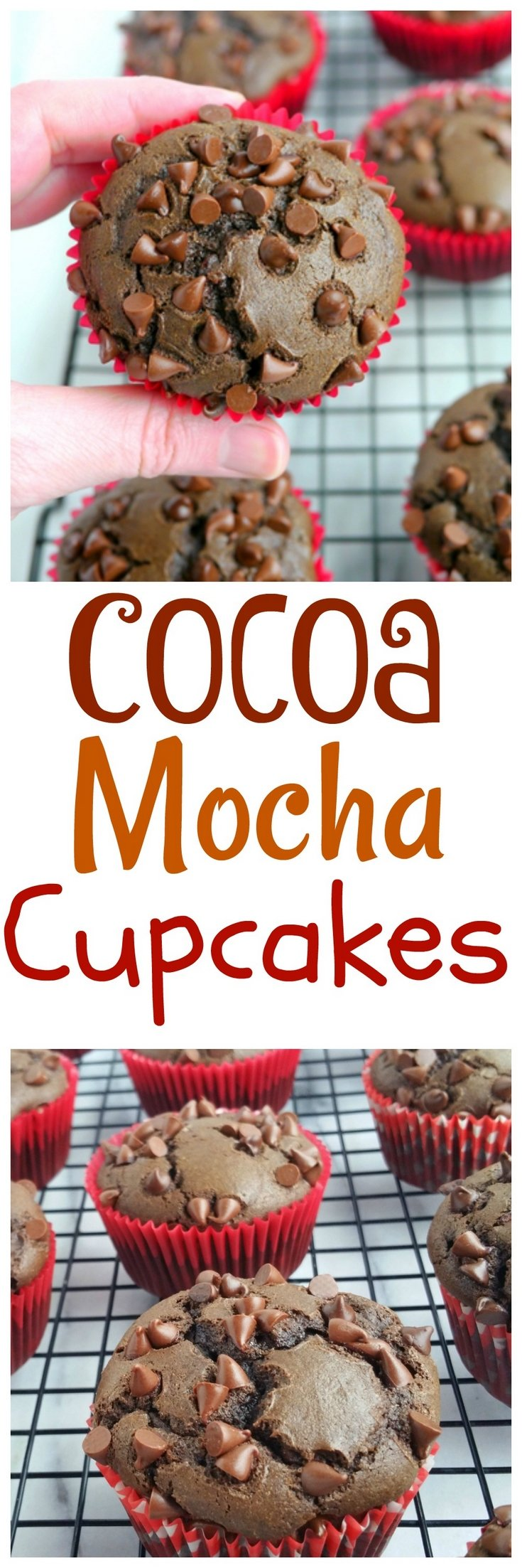 These Cocoa Mocha Cupcakes have a grown-up edge. No one will miss the frosting on this deliciously rich tasting dessert, from NoblePig.com. via @cmpollak1