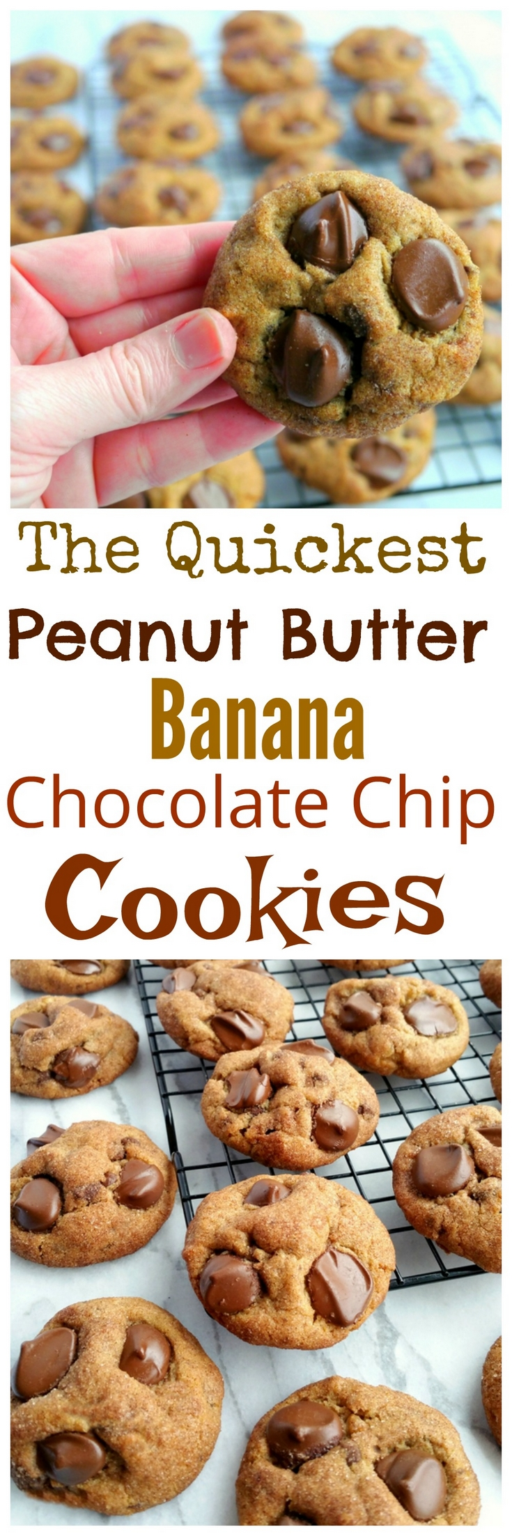 Just when you thought you needed to spend all day making cookies, it turns out you don't! These Quickest Peanut Butter-Banana-Chocolate Chip Cookies are everyone's favorite and they take only minutes to put together. via @cmpollak1