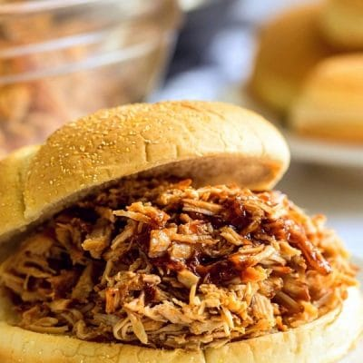 Pulled pork on a bun.