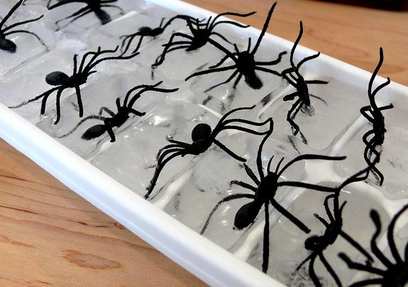 Plastic spiders in ice cubes